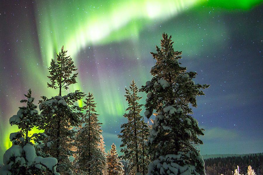 3820_northernlights_northernlightsinetta