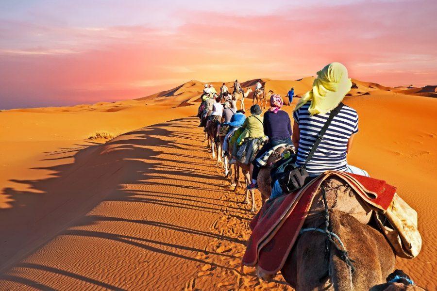 Camel-caravan-going-through-the-desert-in-Morocco-Africa-at-sunset_edited