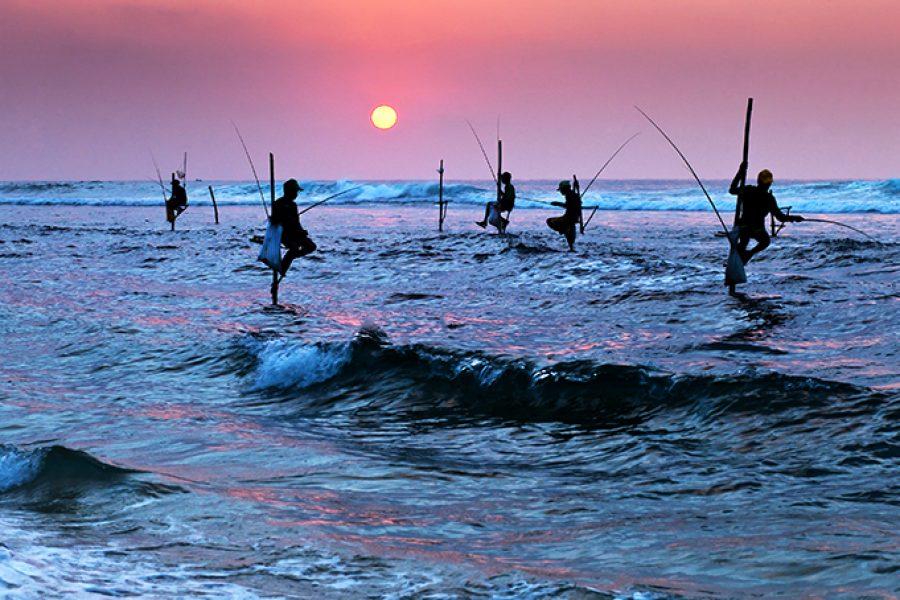 Sri Lanka Stilt Fisherman MyHoliday2 Sri Lanka Tour