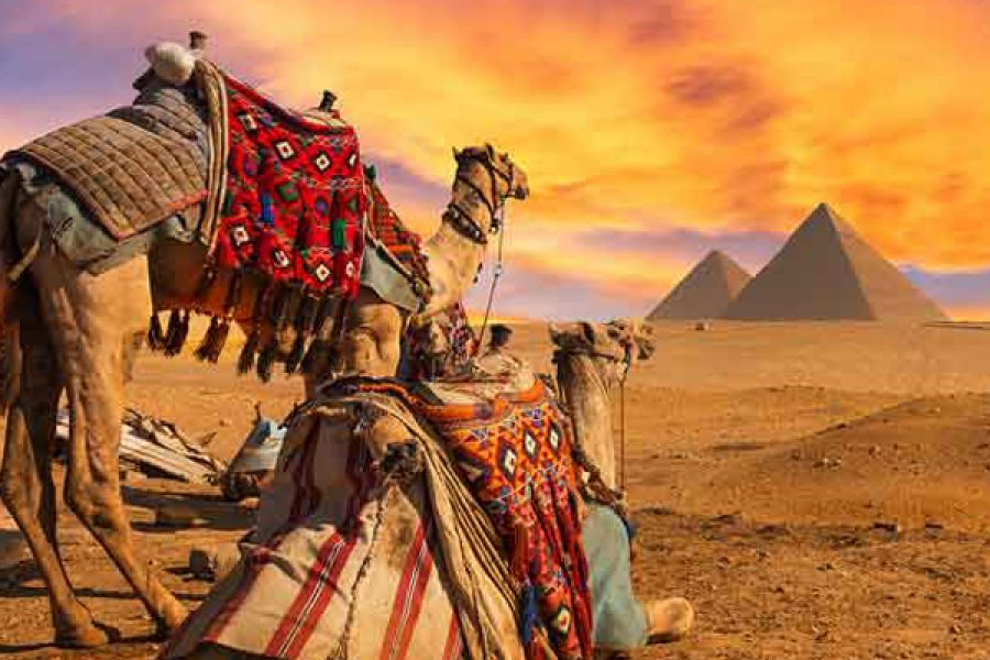 EGYPT Tour MyHoliday2