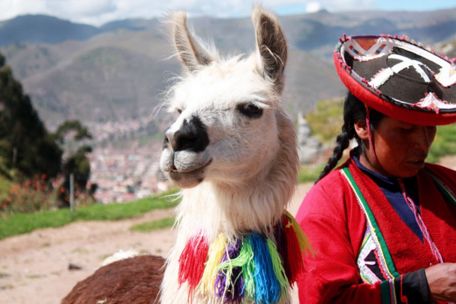 9 Day best of Peru Tour MyHoliday2